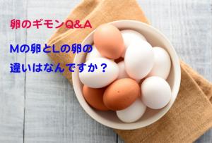 卵のM玉とL玉は、具体的には何が違うの?【卵のギモンQ&A⑭】