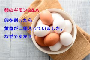 卵を割ったら黄身がなんと2個!なぜ? 黄身が2つかどうかの見分け方は?【卵のギモンQ&A⑫】