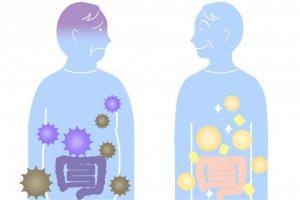 ダイエット成功の近道は腸内環境?腸内のデブ菌を増やさないことが大切