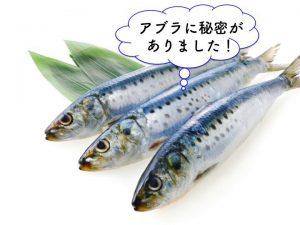 【見た目が若返る食事法】魚油のEPAがおすすめ。イワシ缶やサバ缶でも簡単にとれる