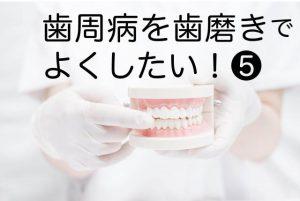 【歯周病を歯磨きで治したい⑤】歯間マッサージ歯磨きは、入れ歯の痛みや圧迫感の対策にもおすすめ