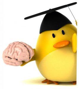 週末に脳活(物忘れ対策や認知症予防に2字熟語クロス)
