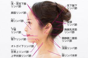 ほうれい線の原因②200種ある顔のリンパの流れが滞り、老廃物が蓄積してほうれい線が深刻化